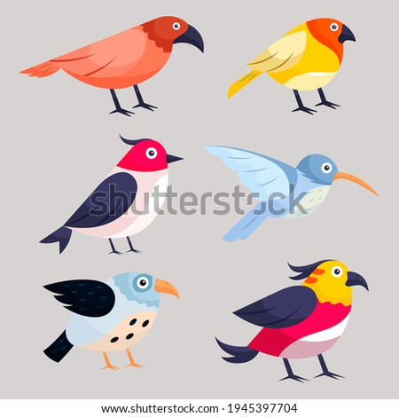 Birds collection. Different small birds set. Little bird, different bird, spring bird, wild bird,  little birds, different birds. Wildlife animal vector illustration.