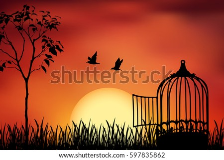 birds couple escape from a cage