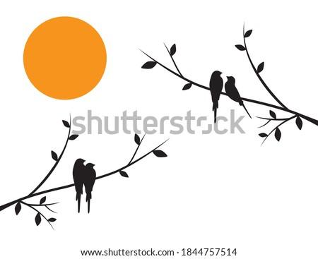 birds couple silhouette on
