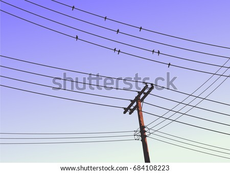birds on a high voltage power
