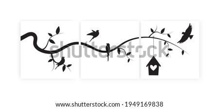 Birds on branch and bird house, vector. Three pieces minimalist poster art design. Birds silhouettes illustration isolated on white background. Wall art, artwork, wall decals. Canvas art printing