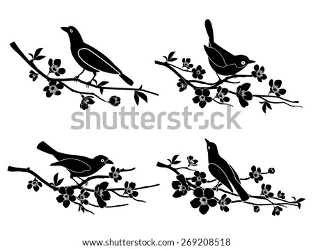 birds on branches nature and