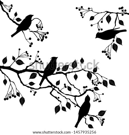 birds on the branch during