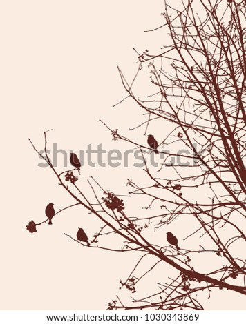 Birds on the rowan branches in winter #1030343869
