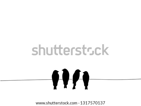 birds on wire vector  wall