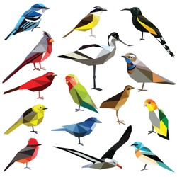 Birds set colorful low poly designs isolated on white background.