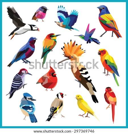 birds set of 15 colorful birds