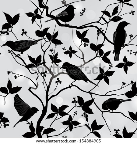 birds silhouette on branch and
