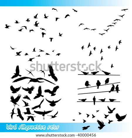 birds silhouette sets - stock vector