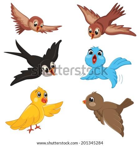 birds vector illustration set