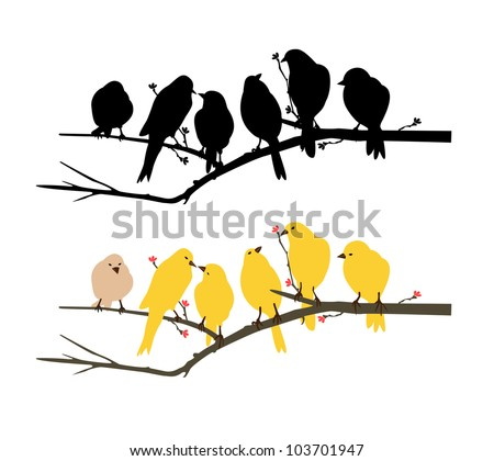 birds wall decal