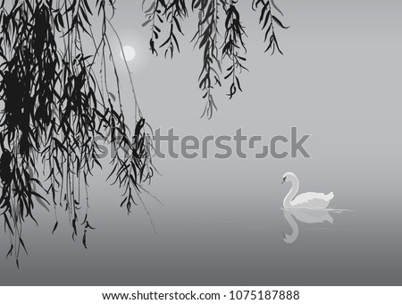 black and white background with