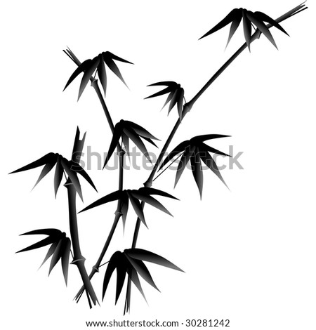 black and white bamboo illustration