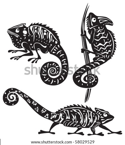 black and white chameleon