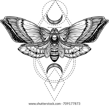 black and white deadhead butterfly ornate illustration on sacred geometry