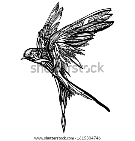 Black and white engrave isolated bird vector illustration. Fashion vector illustration with bird. Illustration for fabric, clother. - Vector.