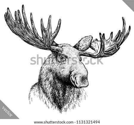black and white engrave isolated elk hand draw vector illustration