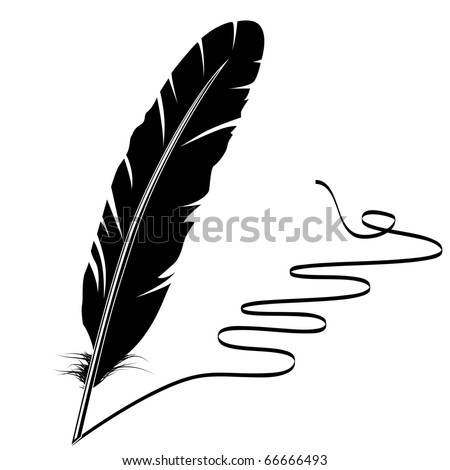 black and white feather and