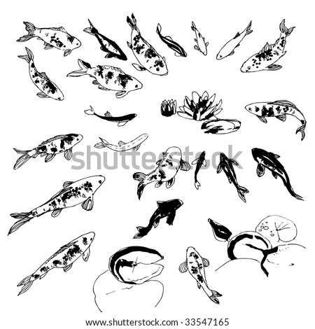 stock vector : Black and white hand-drawing koi fish collection