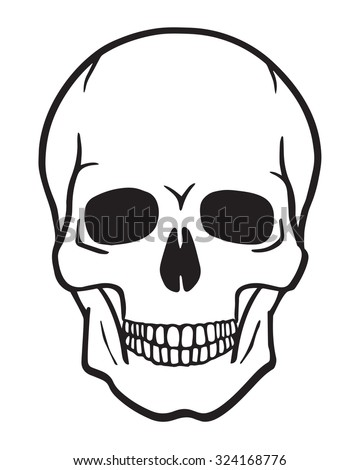black and white human skull
