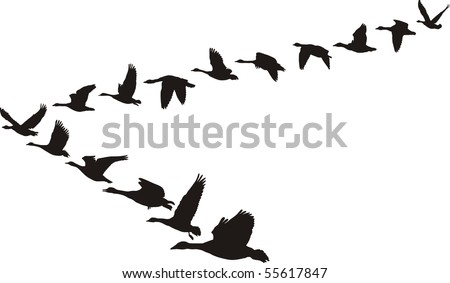 Black and white illustration in the form of flying geese units - stock vector