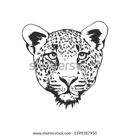 black and white leopard head