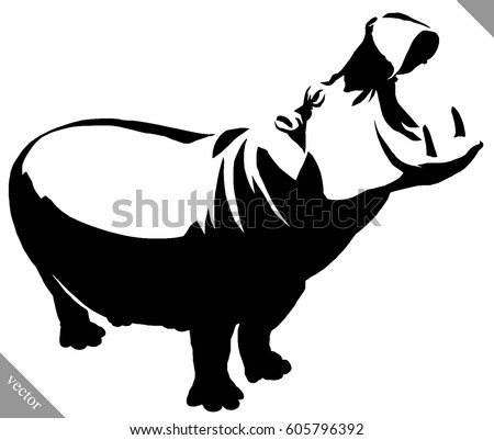 black and white linear paint draw Hippo vector illustration