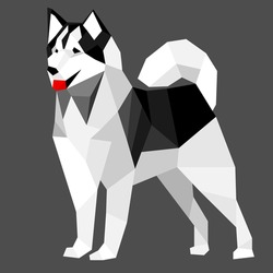 Black and white low poly dog. Vector illustration, siberian husky dog.
