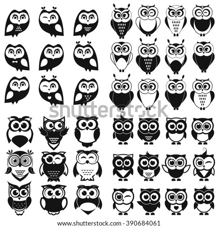 black and white owl and owlet