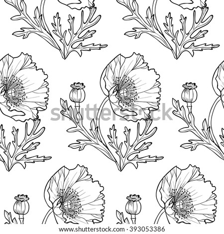 black and white poppies vector