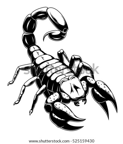 black and white scorpion