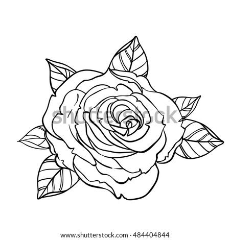 75b47206e6ed Black and white tattoo style roses with leaves isolated on white  background. Vector illustrations.