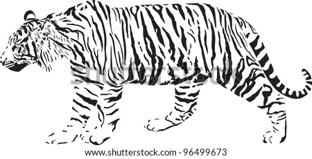 black and white vector illustration tiger