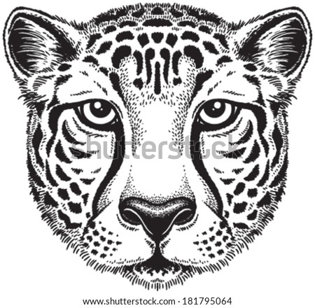 Black And White Vector Line Drawing Of A Cheetah S Face