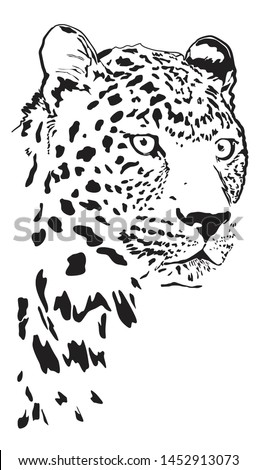 black and white vector portrait