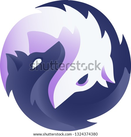 black and white wolf in a