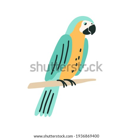 black and yellow macaw sitting