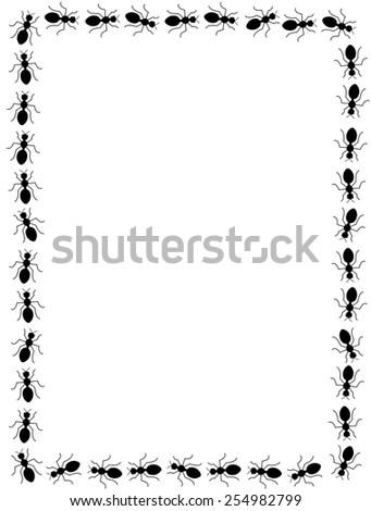 black ants frame on white