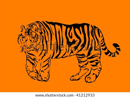 Black bengal tiger isolated on orange background, vector illustration