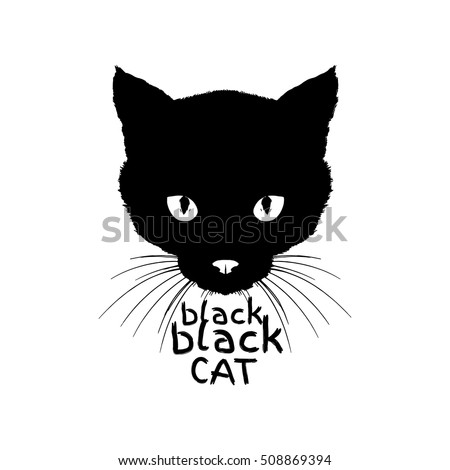 black black cat  monochrome