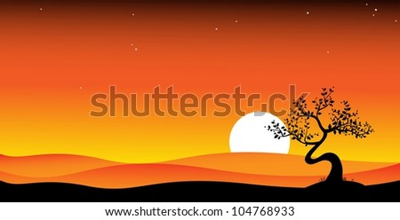 black bonsai tree on sunset