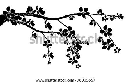 black branch of beautiful