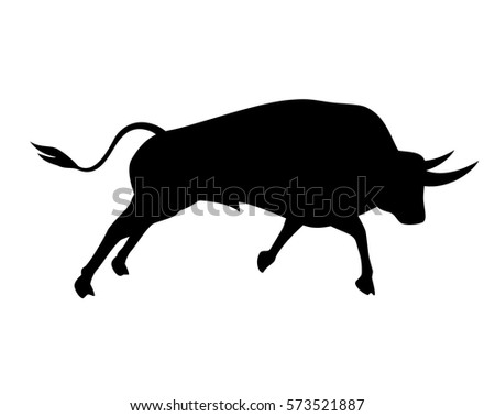 black bull isolated on a white