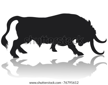 Black bull stands in an aggressive posture, lowered head with huge horns.