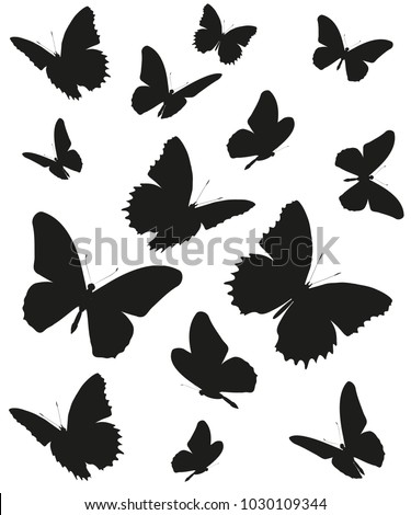 stock-vector-black-butterfly-isolated-on-a-white