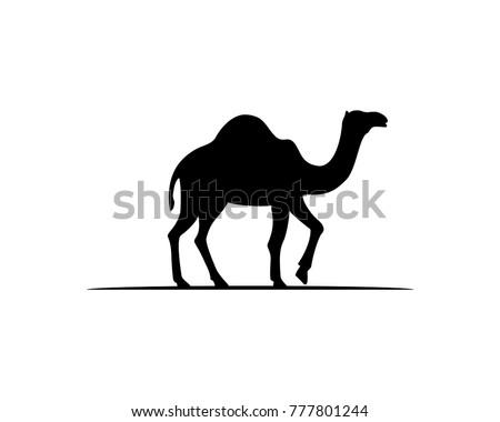 Download Camel Wallpaper 240x320 | Wallpoper #62842 | 450 x 380 jpeg 22kB