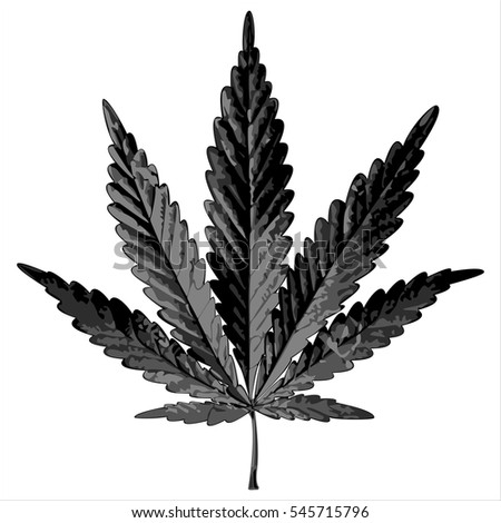 black cannabis leaf on a white