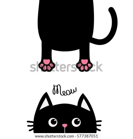 black cat funny face head