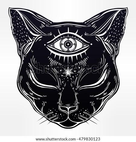 black cat head portrait with