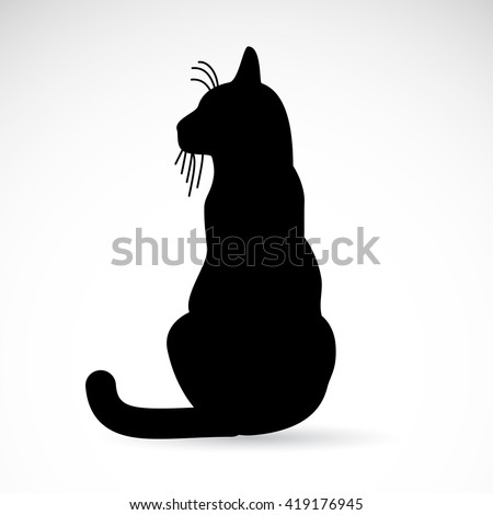 black cat icon isolated on